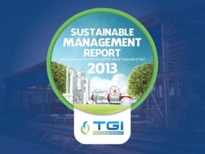 Sustainable Management Report TGI 2013
